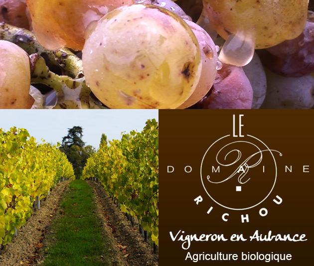 Le Domaine Richou est un domaine familial présent depuis trois générations