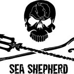 logo-sea-shepherd